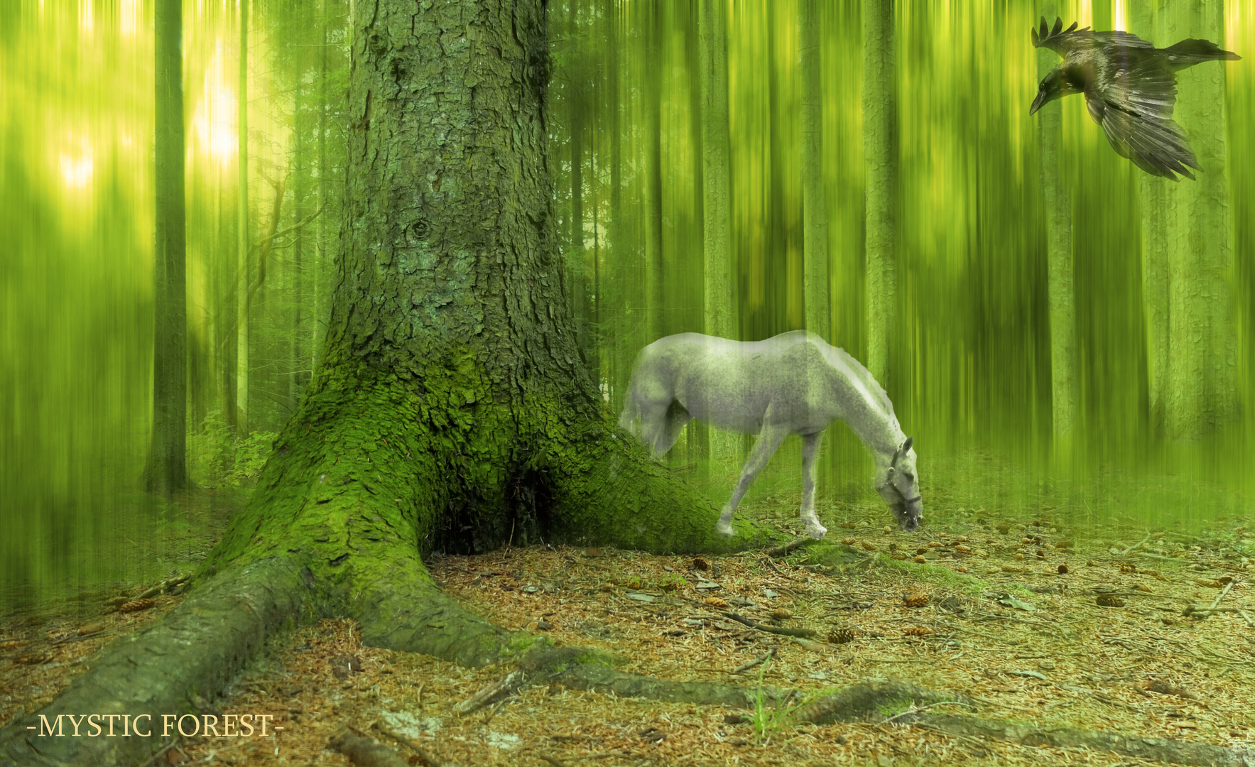 -MYSTIC FOREST-