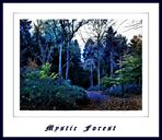 ** Mystic Forest **