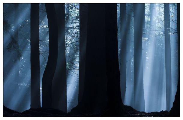 mystic light II