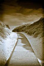 Mystical landscape...