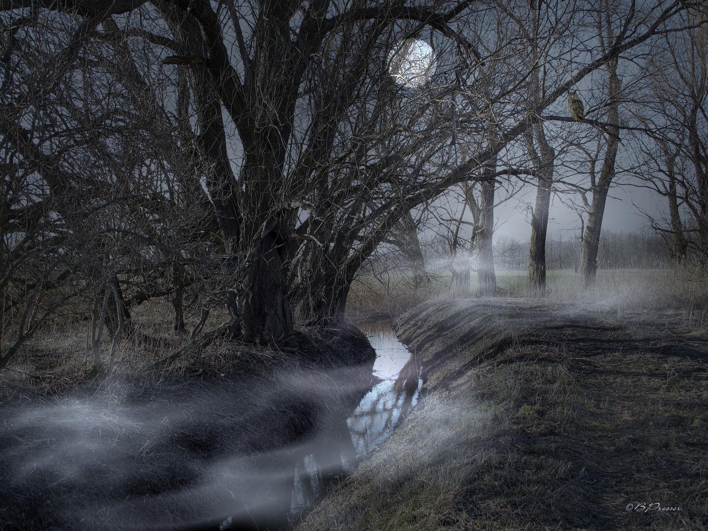 mystical night