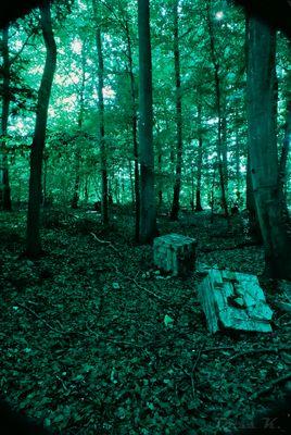 Mystification par la nature 2