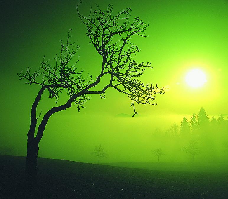 Mystik muss man nicht durchschauen - sie ist da, um zu faszinieren...