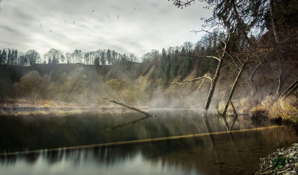 Mystisch am Fluss