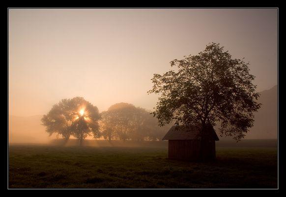 Mystische Herbststimmung II.