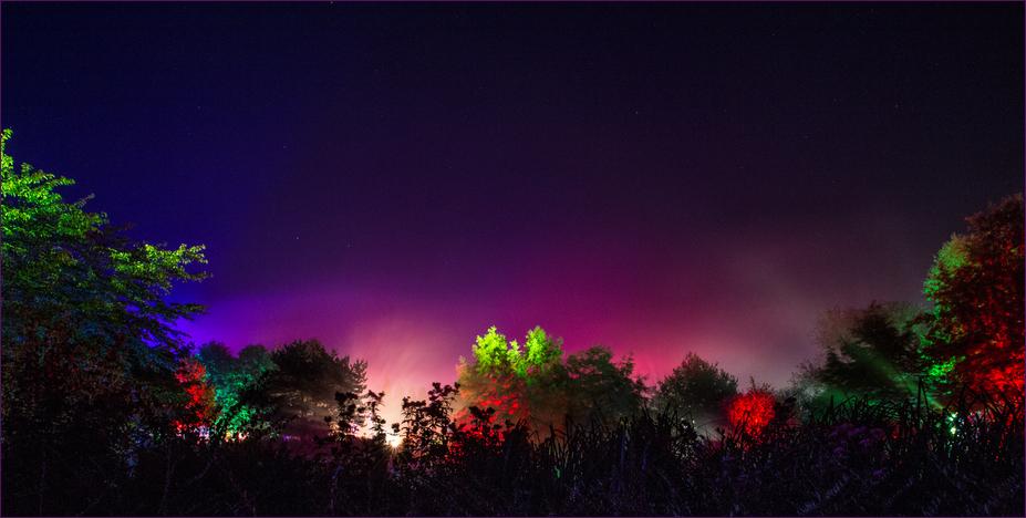 Mystische Nacht I