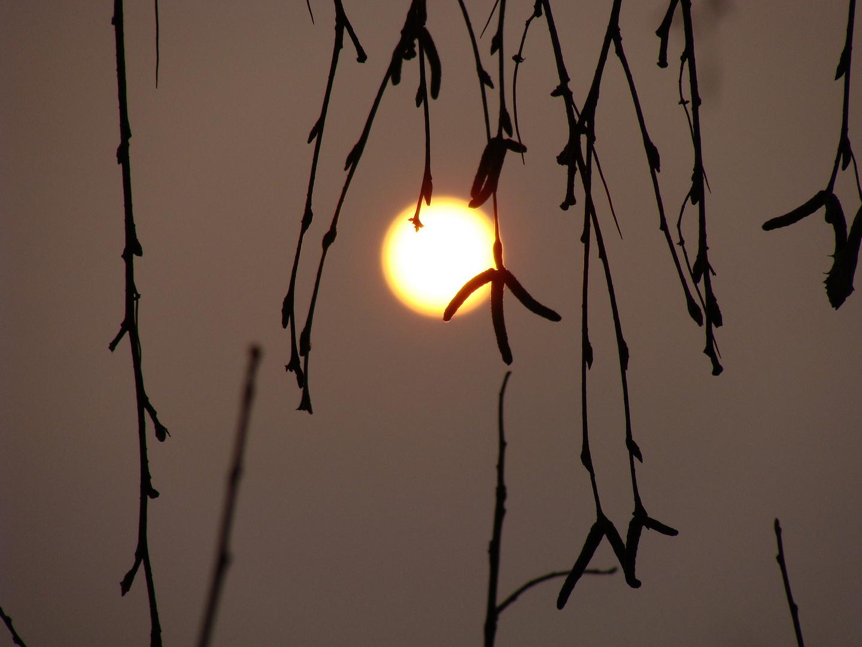 mystischer Sonnenaufgang