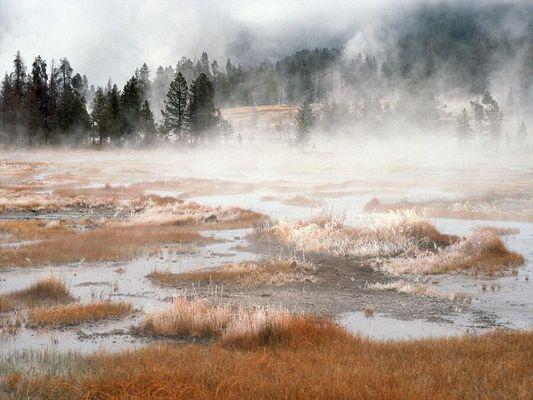 Mystischer Yellowstone im Winter
