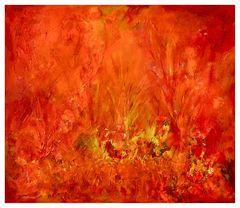 mystisches Feuer - mystical fire