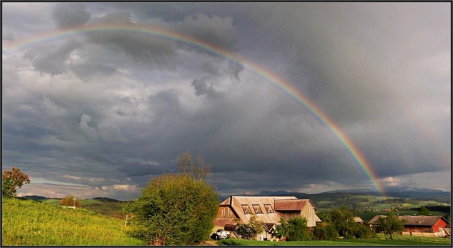 Nach dem Gewitter auf dem Hausberg . . . . . . . . . . .                    après l'orage