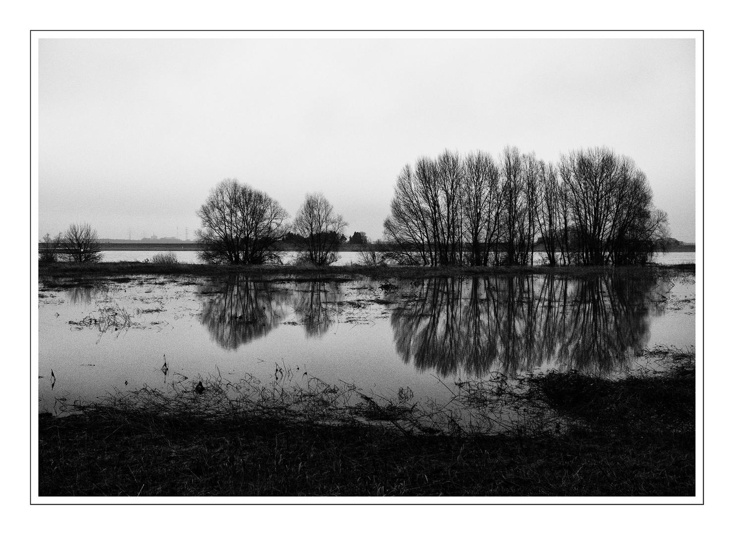 Nach dem Hochwasser 2