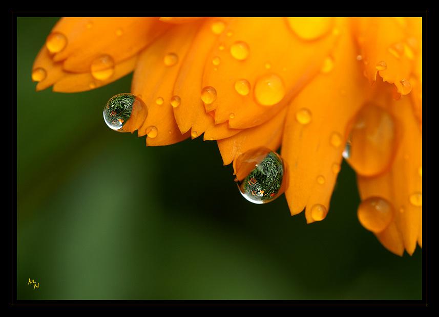 Nach dem Regen 3