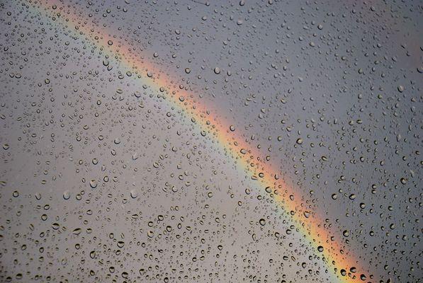 ...nach dem Regen...
