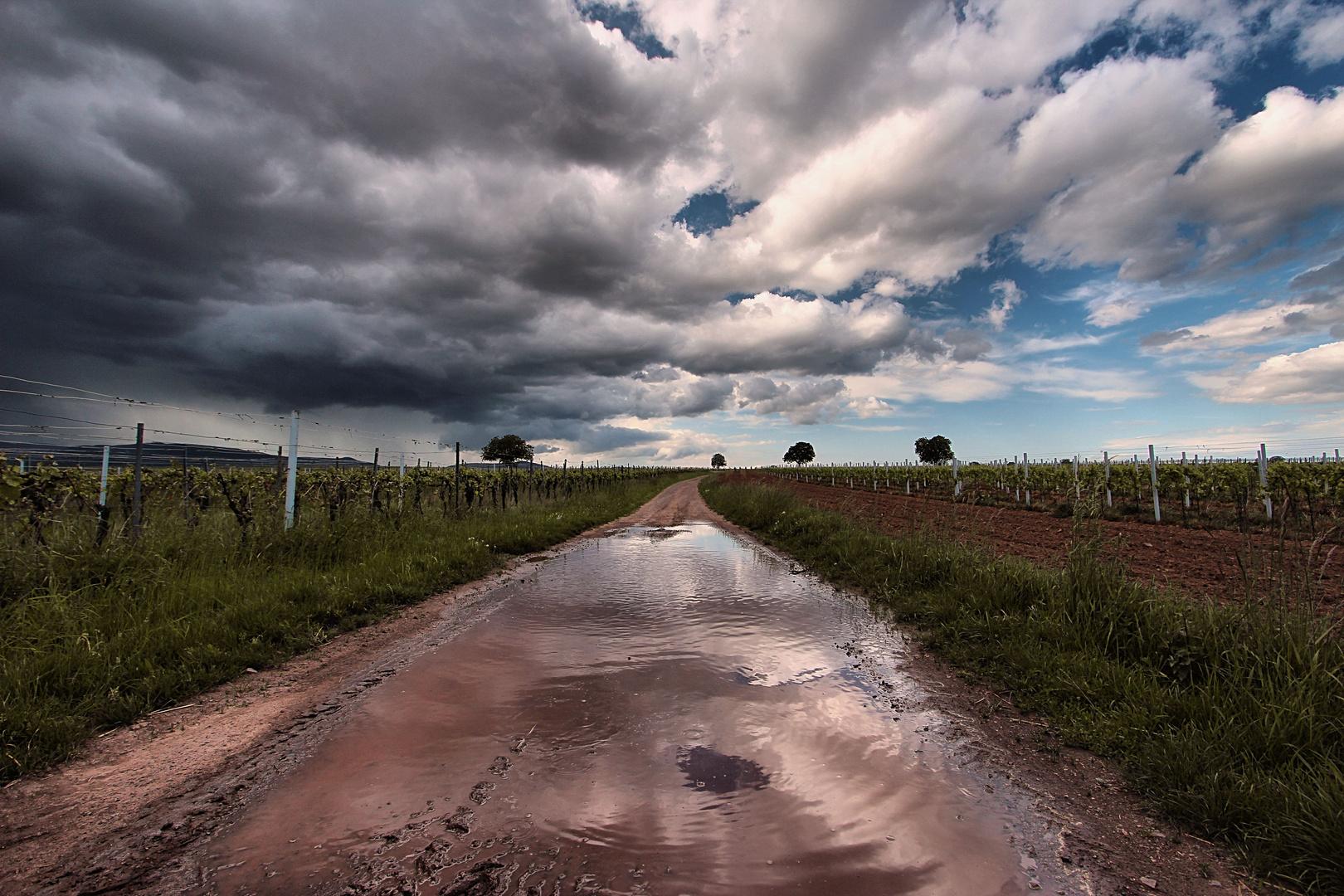Nach dem Regen ist vor dem Regen