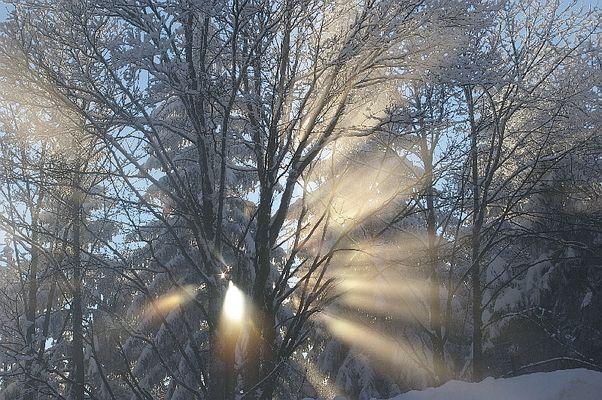 Nach dem Schneefall....