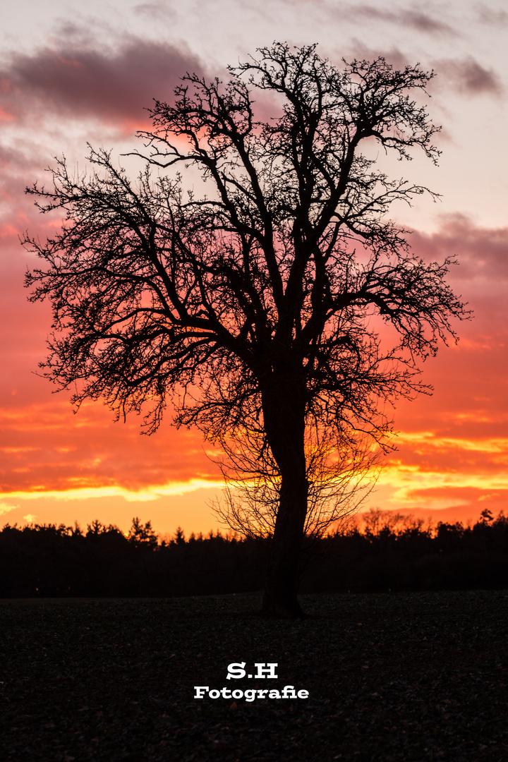 Nach dem Sonnenuntergang