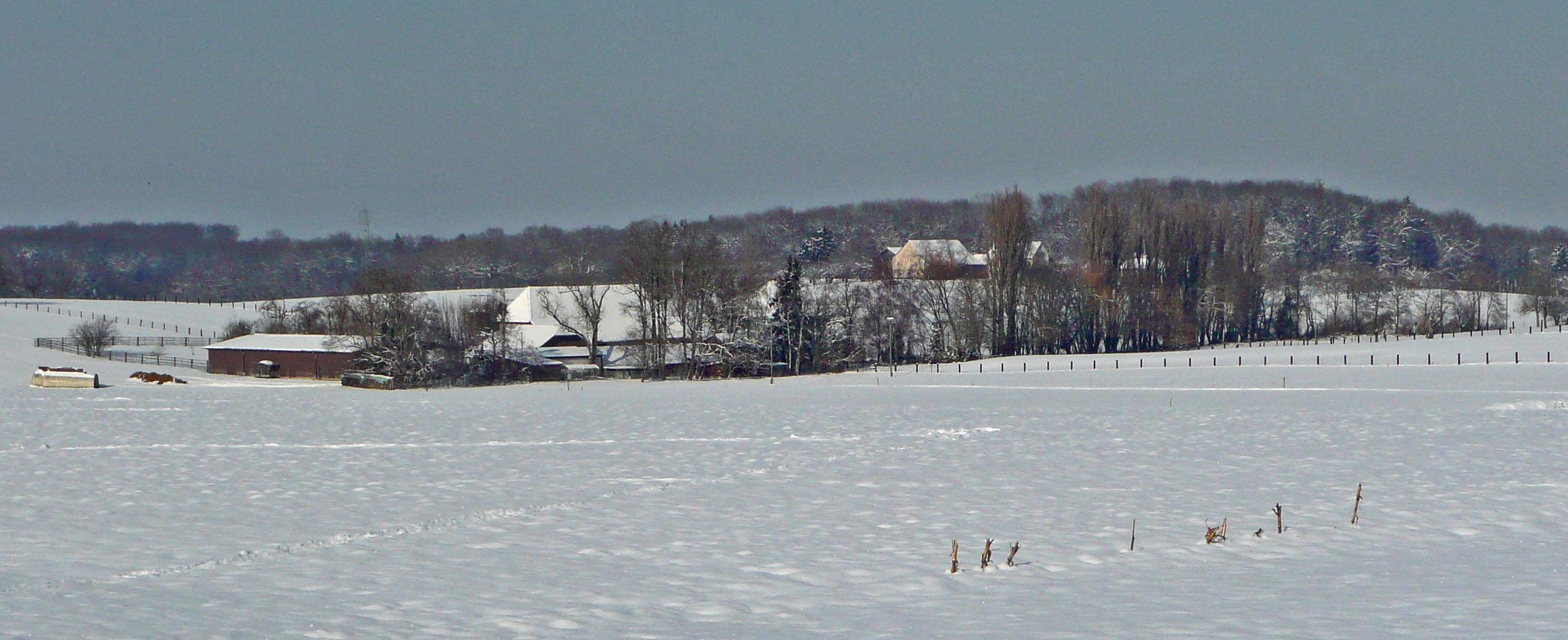 Nach Frühlingstagen hat es heute wieder geschneit.