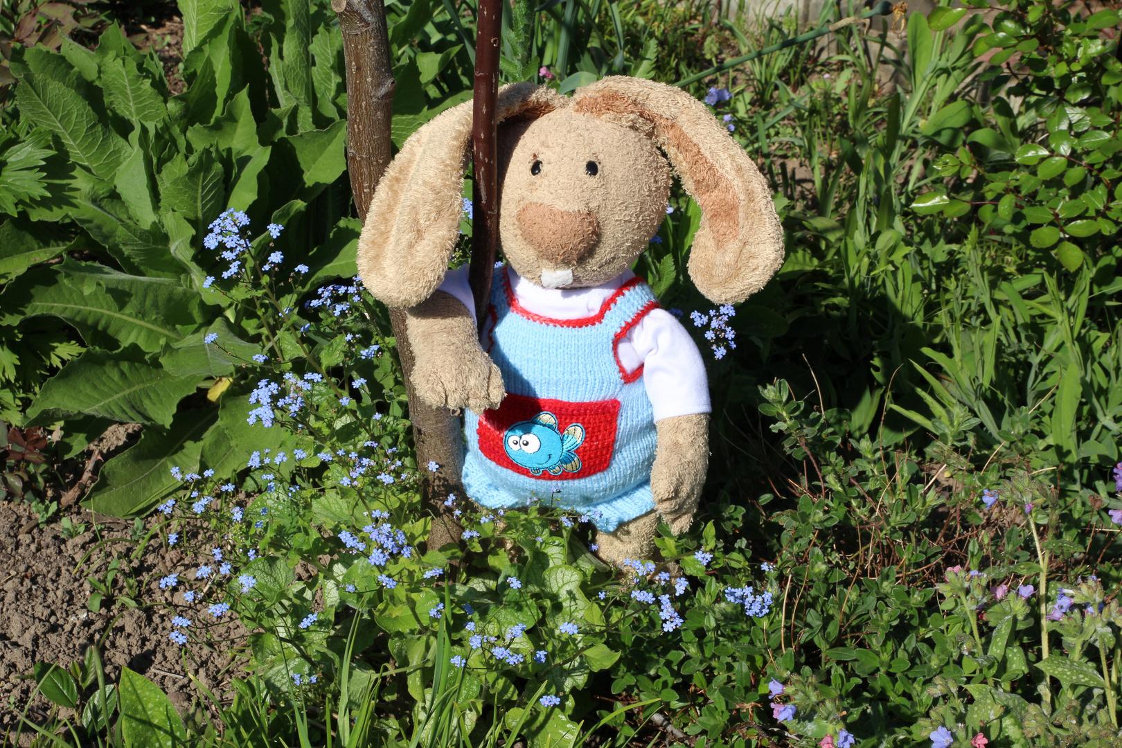 Nach Ostern hat auch der Hase mal wieder Zeit, in den Garten zu gehen!