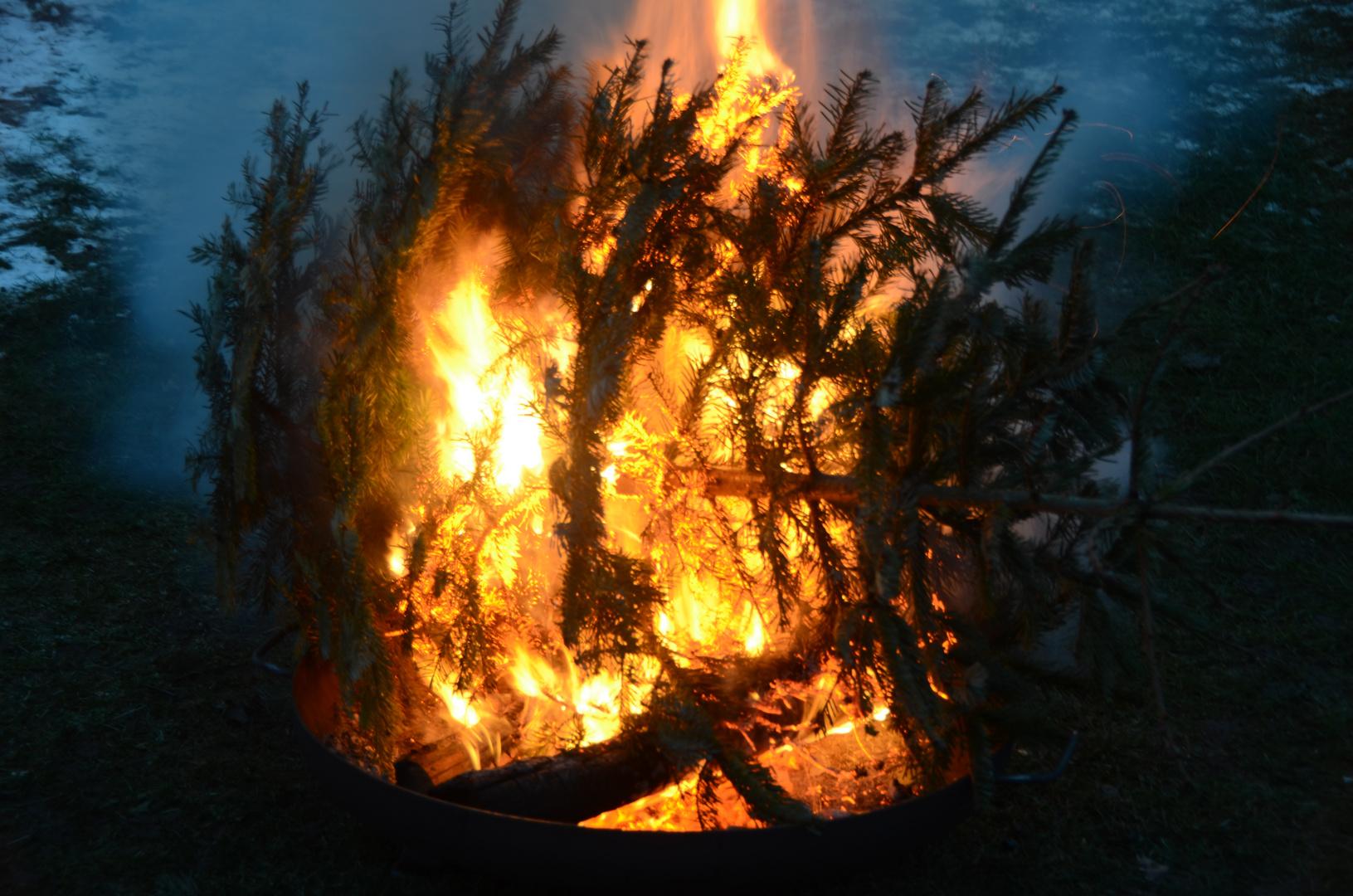 Nach Tannenbaum weitwurf .kommt Verbrennung