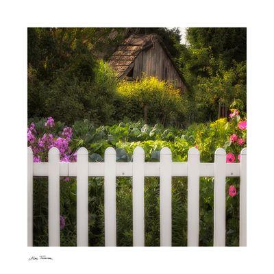 Nachbars Bauerngarten ...