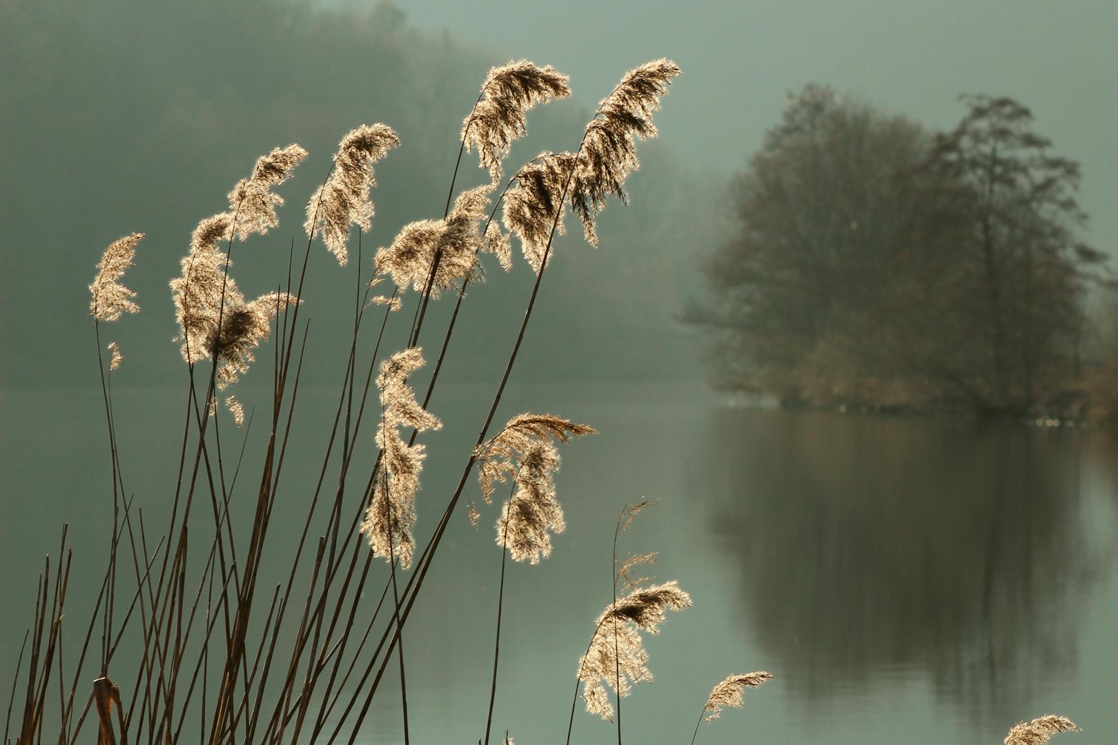Nachmittag am Fluss