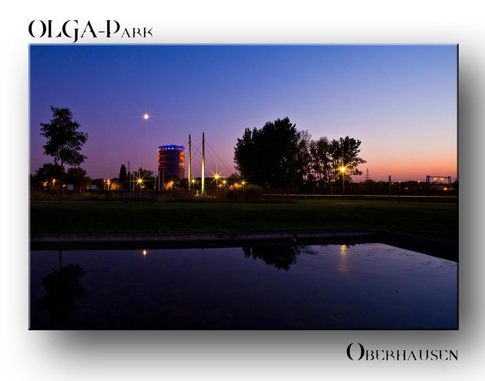 Nacht im OLGA-Park