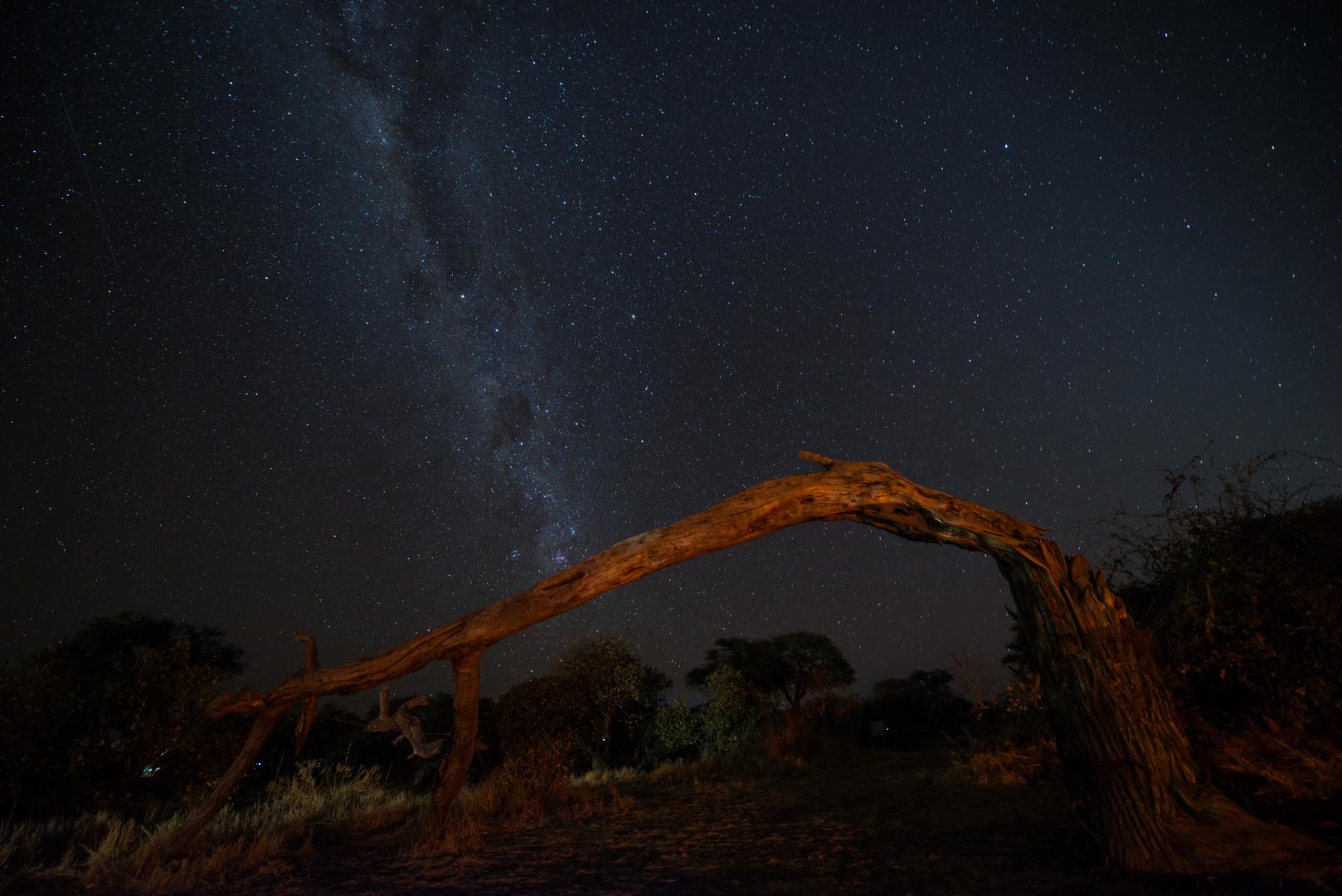 Nacht in Afrika