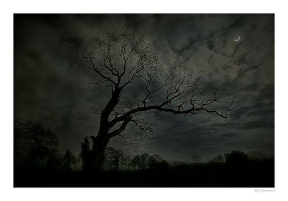 Nacht in Mellenthin