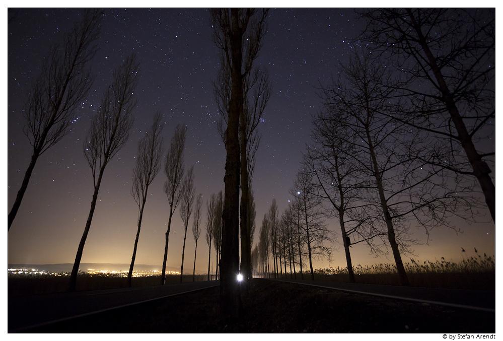 Nachtallee