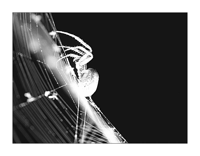 Nachtaufnahme
