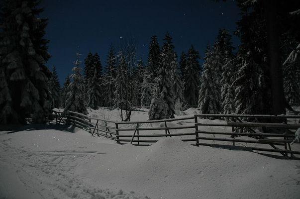 Nachtaufnahme bei Schnee