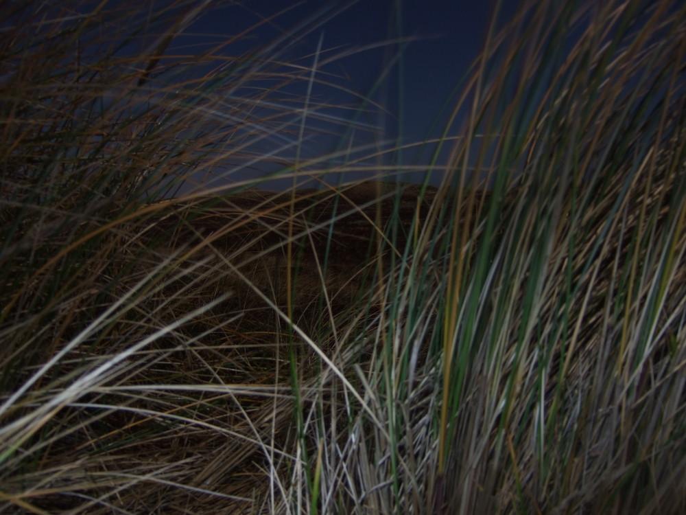 Nachtbelichtung an einem Pfad zum Strand in Dänemark Fuji f31fd