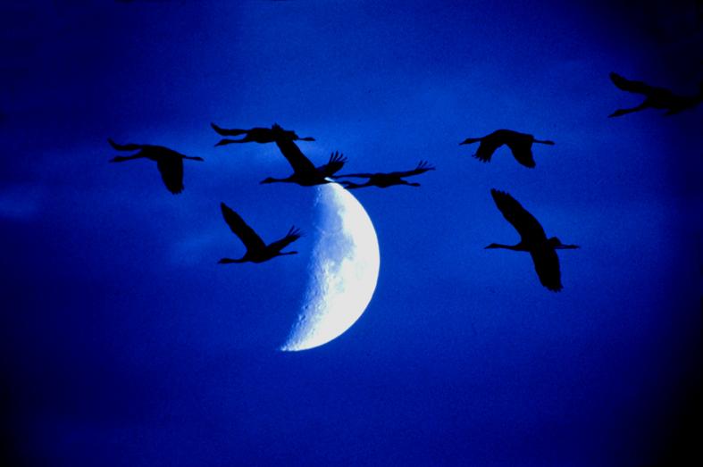 Nachtflug