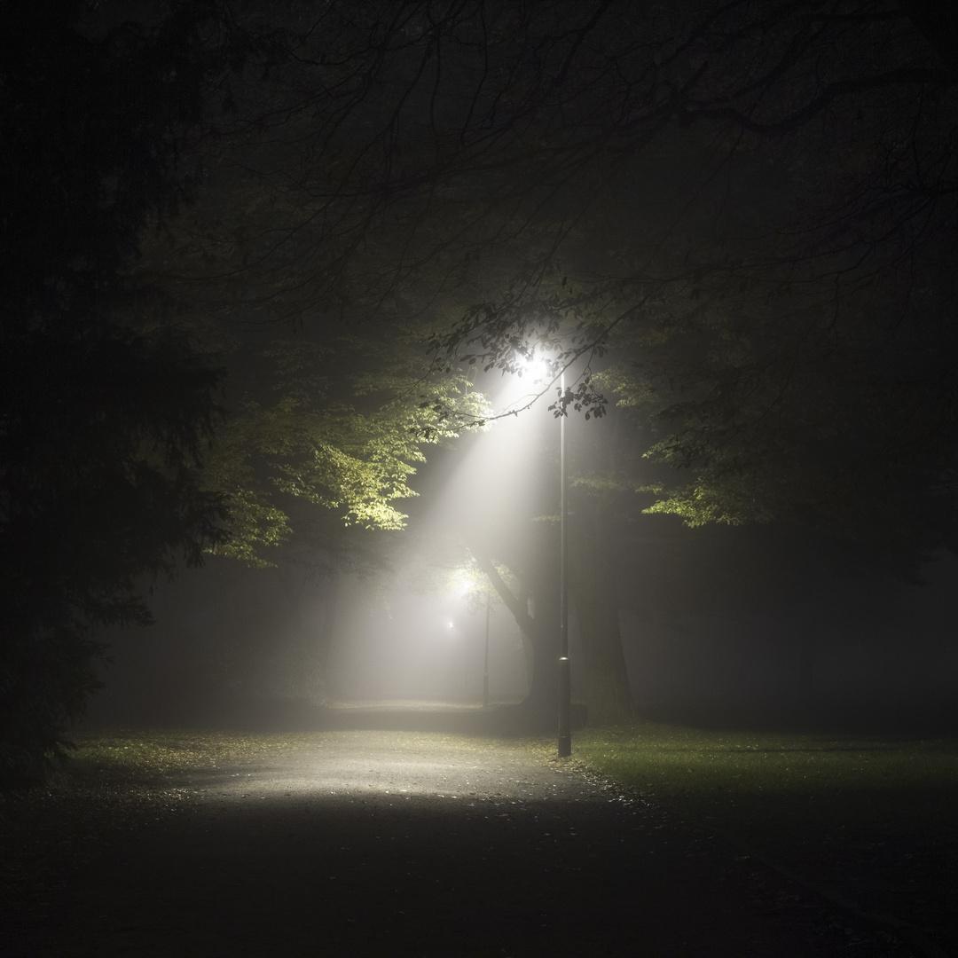 Nachtnebel - 1