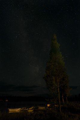 Nachts am See...