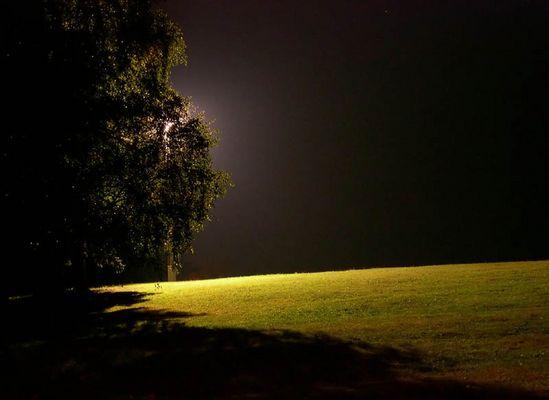 Nachts gibt es kein Leben