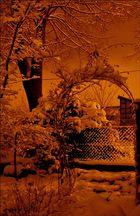 nachts im Garten 2