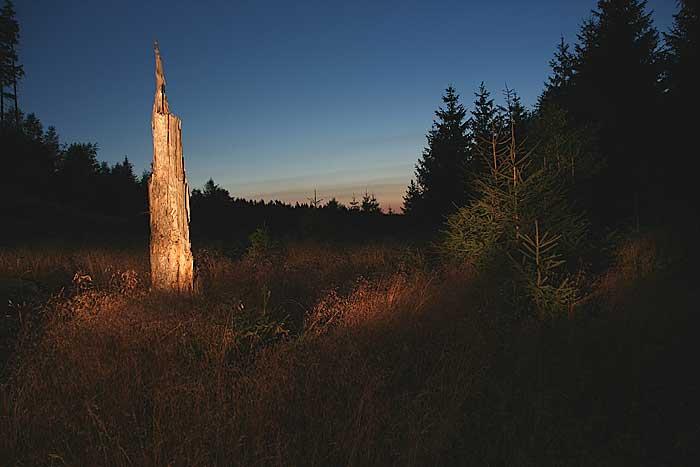 Nachts im Harz