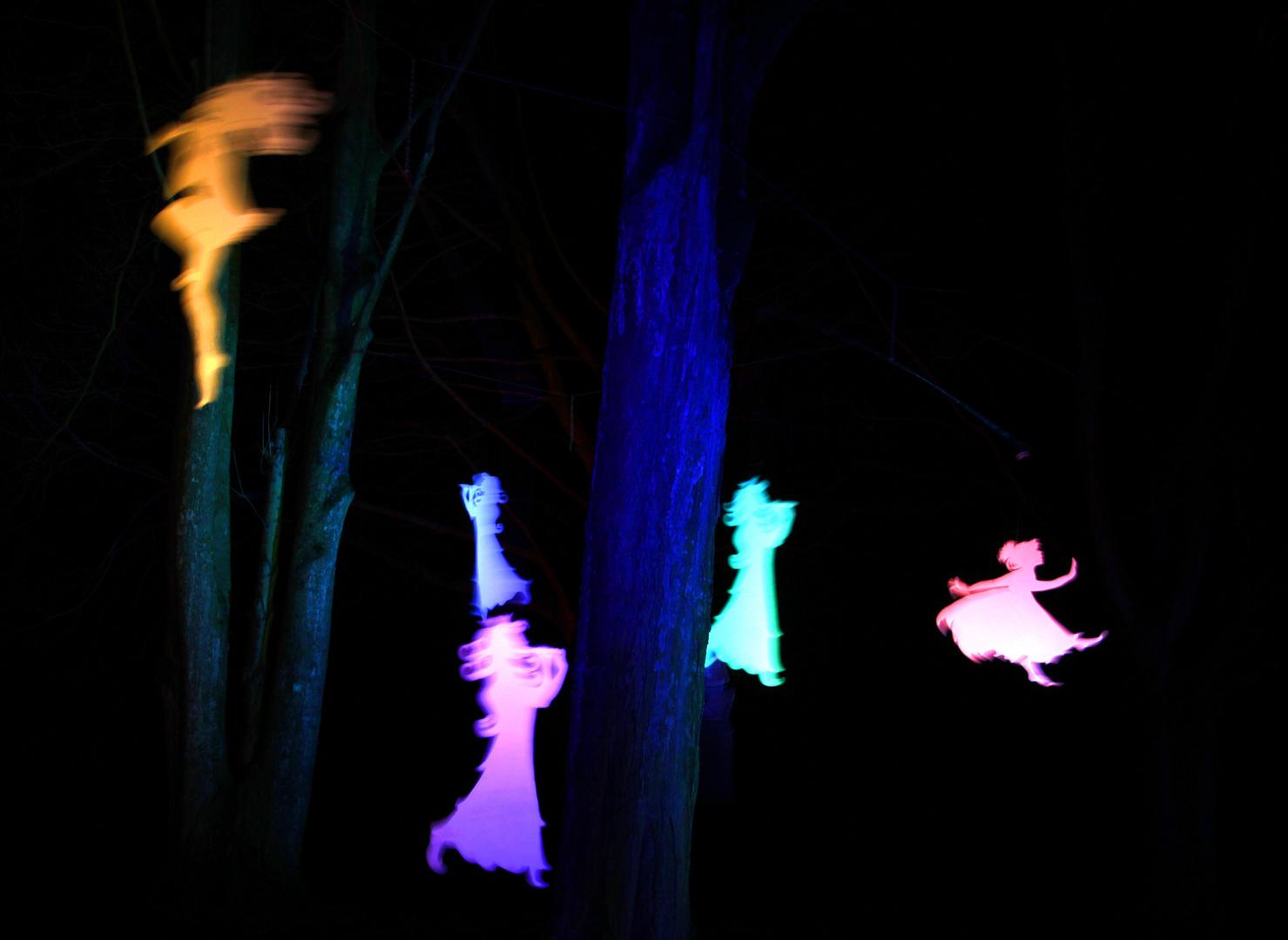 Nachts im Märchenwald...