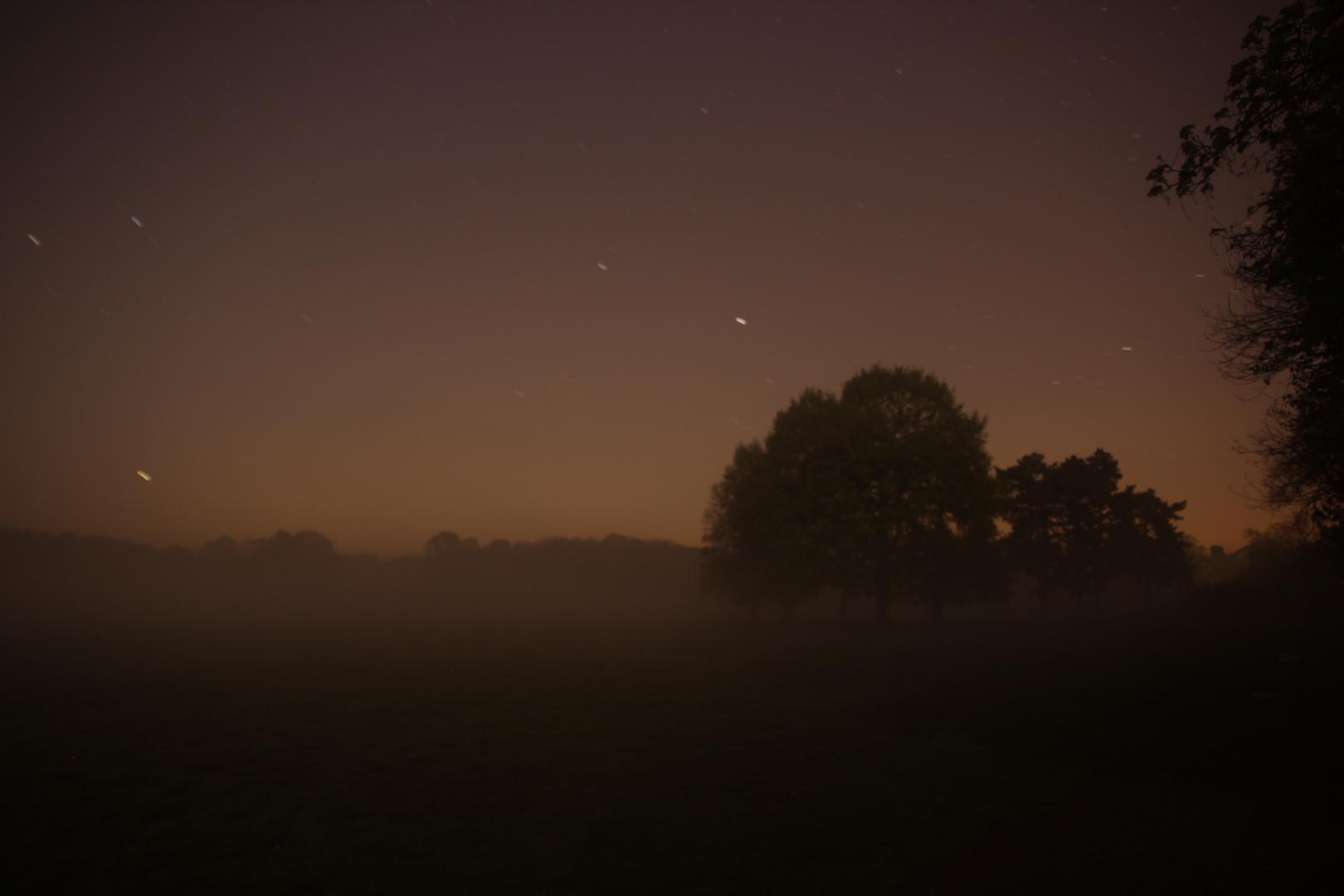 Nachts im Nebel - neu