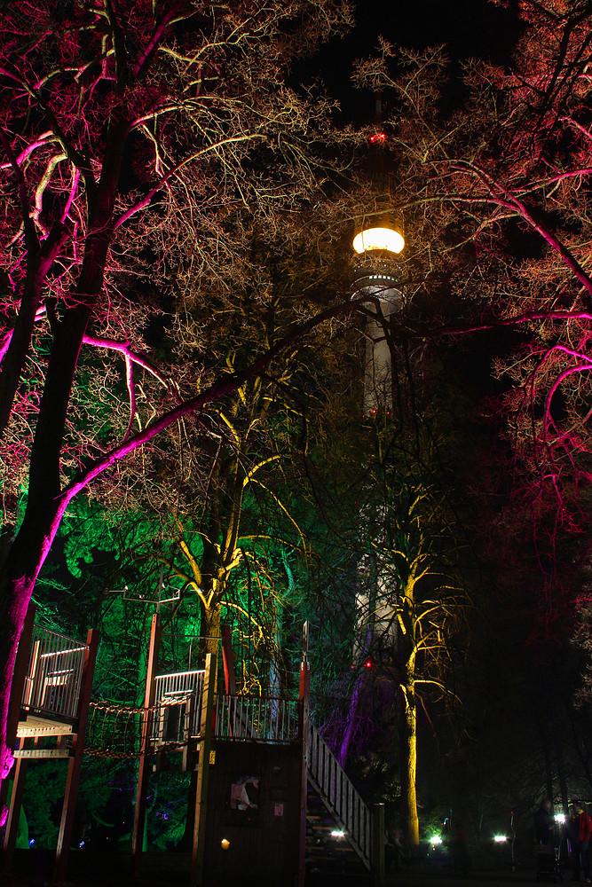 Nachts im Park  #2