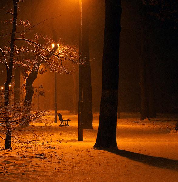 Nachts im Stadtpark, die Laterne....