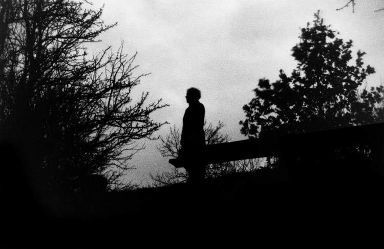 nachts im Wald I