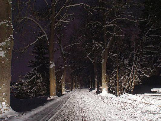 Nachts im Winter im Wald :-)