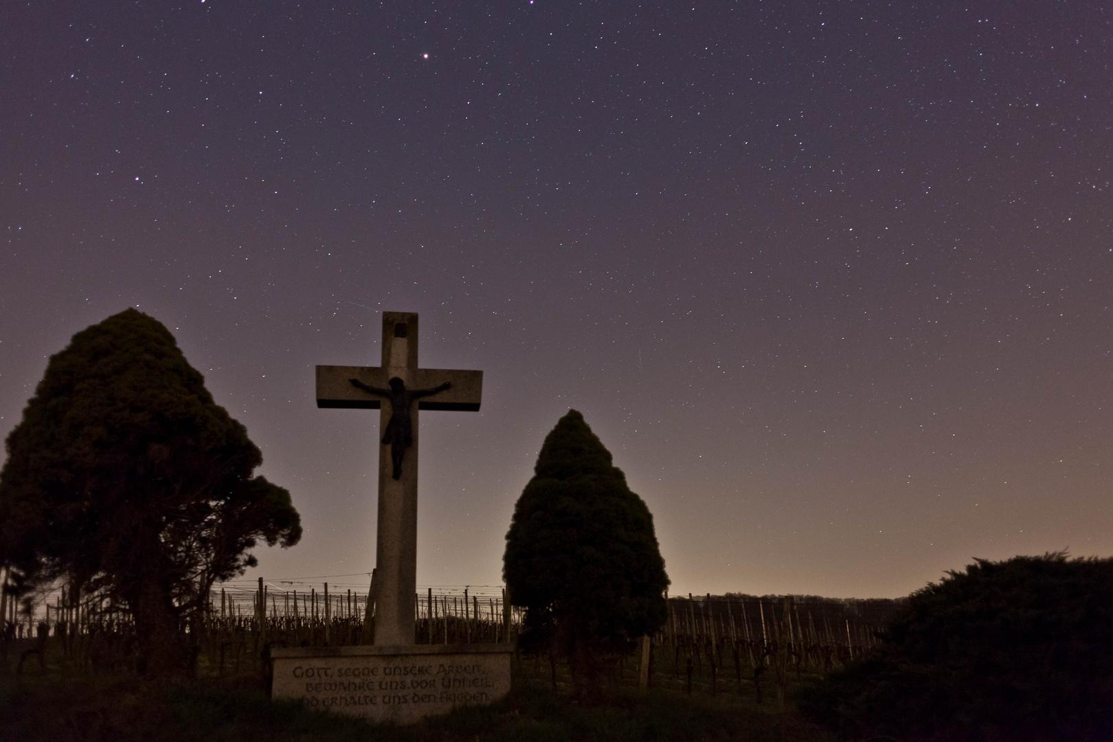 Nachts in den Weinbergen