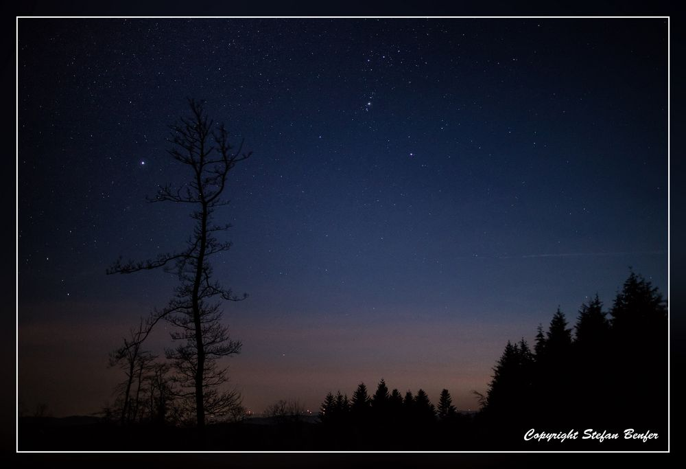 Nachts in Wittgensteiner Wäldern