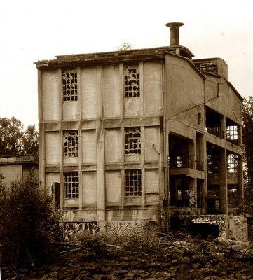 nackt- das pure Haus in Sephia