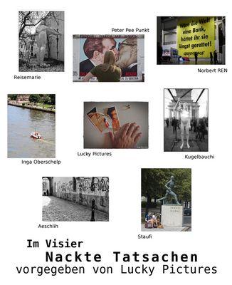 *Nackte Tatsachen* Collage von Inga
