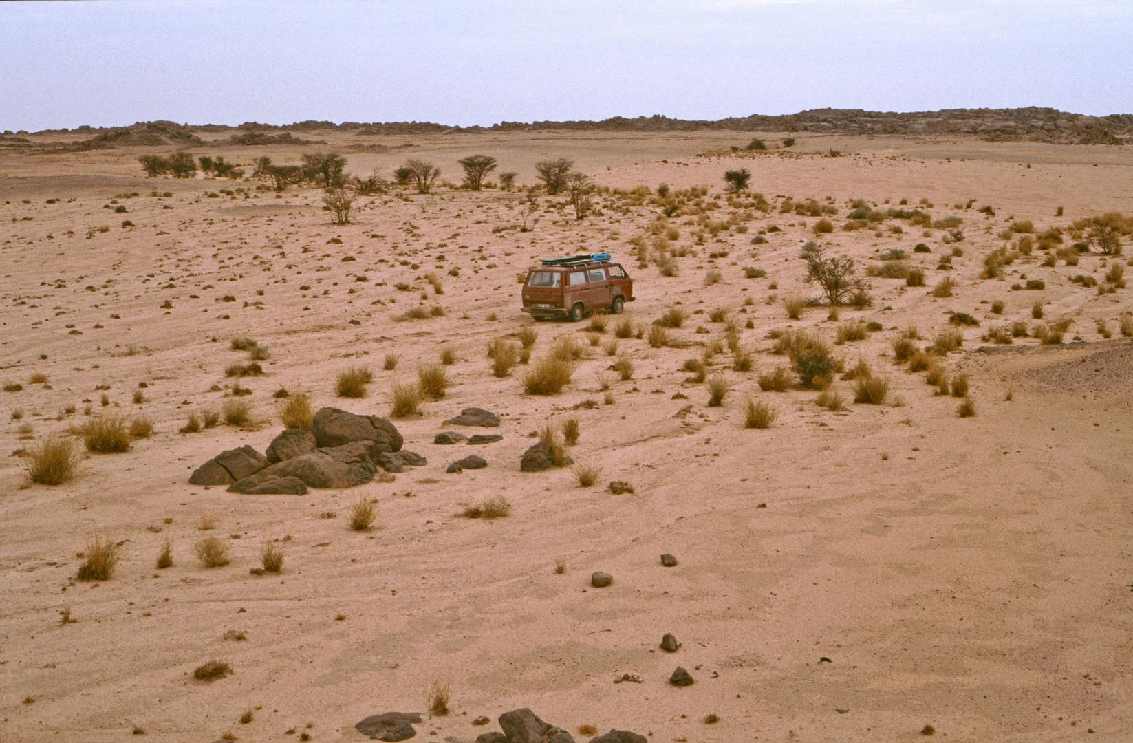 Nächte in der Sahara, Algerien