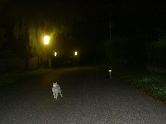 nächtlicher spaziergang